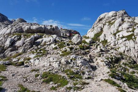 Dovška vratca - pogled proti križišči za Bovški gamsovec.jpg