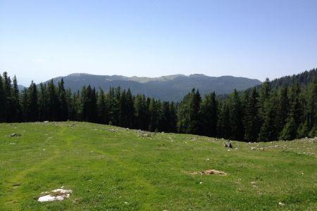 Podvežak - pogled proti Veliki planini.JPG