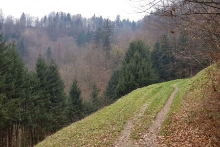 Lubnik - pot proti Gabrovu.jpg
