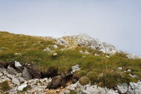 Potoški Stol - pogled proti vrhu.jpg