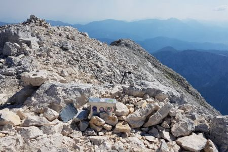 Rjavina - vrh.jpg