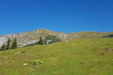 Kofce - pogled na Veliki vrh.jpg