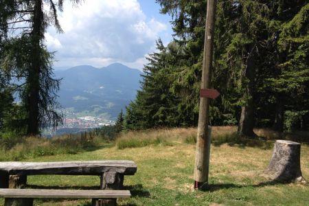 Koča pod Kremžarjevim vrhom - pogled proti Uršlji gori.JPG