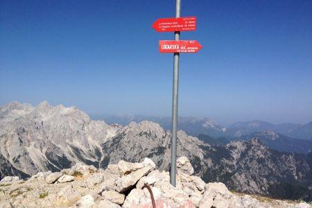 Osjtrica - vrh, pogled proti Rinkam.JPG