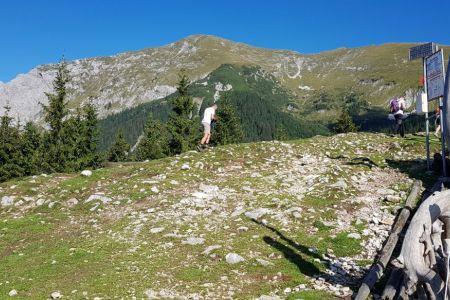 Kofce - pogled s koče na Veliki vrh.jpg